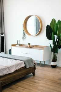 plants for bedroom to clean air